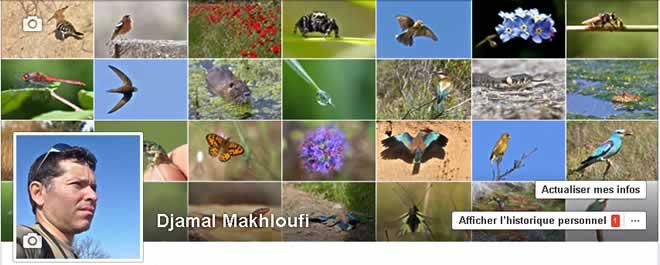 Suivez Djamal Makhloufi sur Facebook