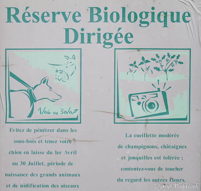 Réserve biologique dirigée
