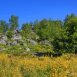 Paysage d'Apremont - Forêt de Fontainebleau