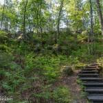 Les escaliers de l'Érosion - Forêt de Fontainebleau