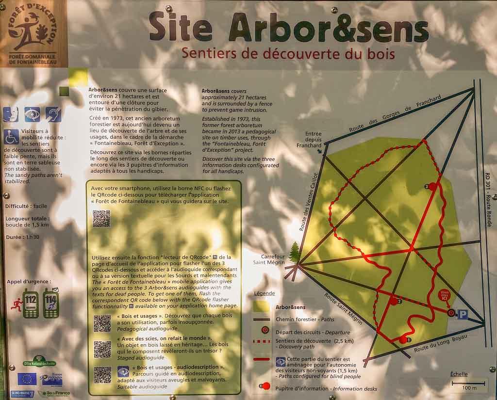 Plan de circulation de l'Arbo&Sens