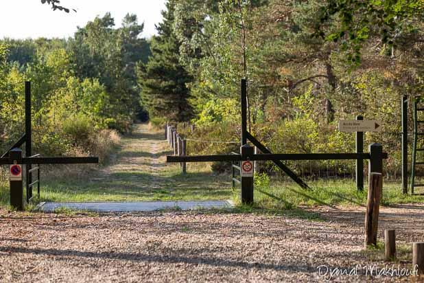 Entrée de l'Arboretum de Fontainebleau et de Franchard