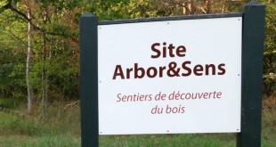 Arboretum de Fontainebleau - Arbo&Sens