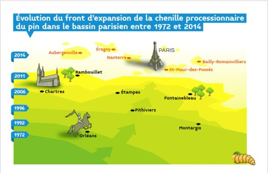 Front d'expansion de la chenille processionnaire du pin - Ministère de l'Environ