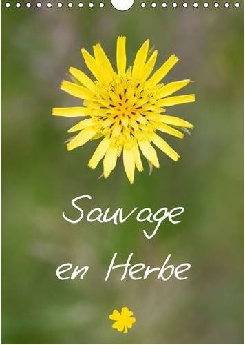 Calendrier Sauvage en herbe