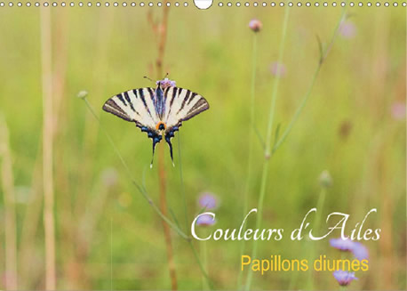 Couleurs d'Ailes - Calendrier photos de papillons de France