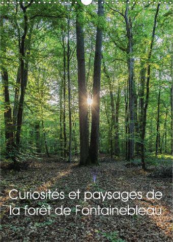 curiosités et paysages de la forêt de Fontainebleau