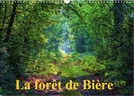 Calendrier sur la forêt de Bière - Forêt de Fontainebleau
