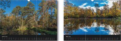 Beaux paysages de la forêt de Fontainebleau
