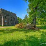 Ermitage de Franchard - Forêt de Fontainebleau