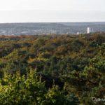 Panorama de la Tour de l'Empereur en forêt de Fontainebleau