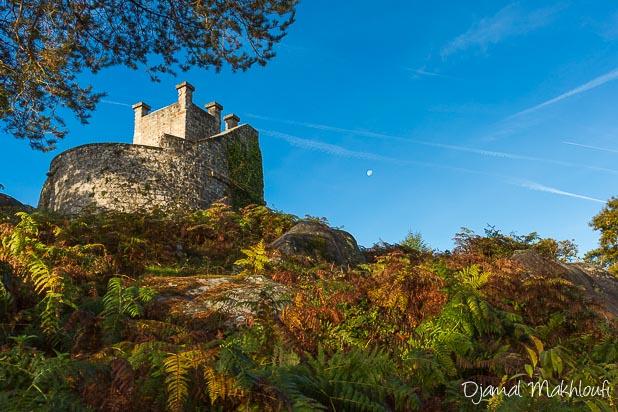 Tour Denecourt - Forêt de Fontainebleau