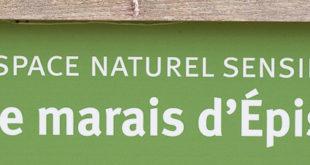 Marais d'Épisy - Milieux humide sud Seine et Marne