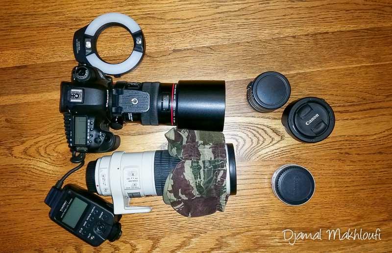 Mon matériel photo animalière et macro