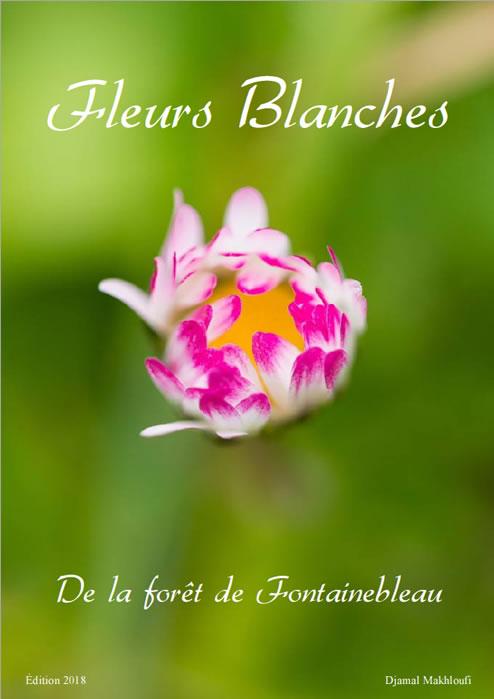 Ebook - Fleurs blanches sauvages de la forêt de Fontainebleau - PDF