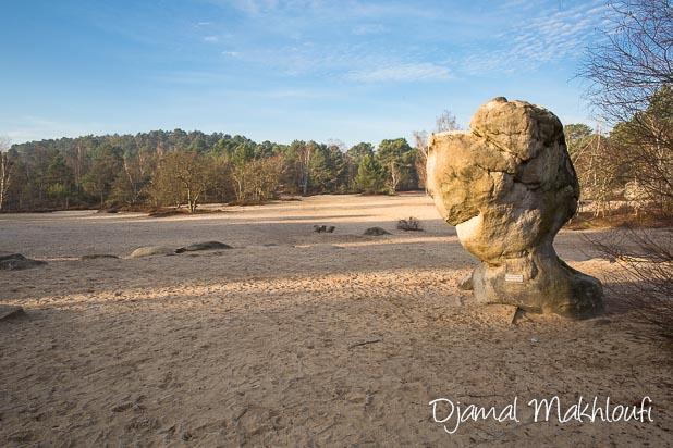 Sables du cul du chien - Massif des 3 pignons (forêt de Fontainebleau)