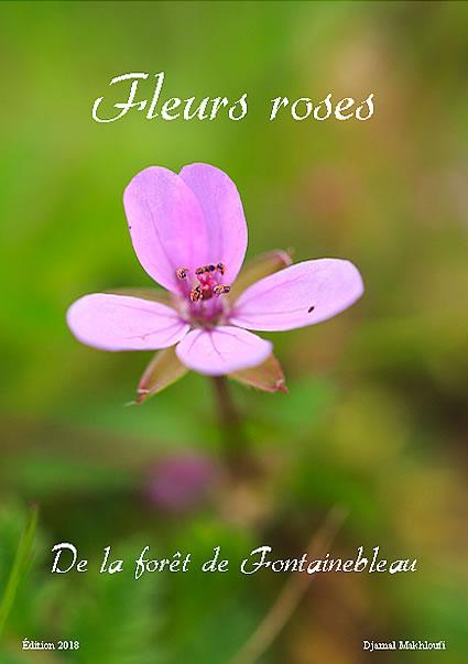eBook nature - Fleurs roses sauvages de la forêt de Fontainebleau