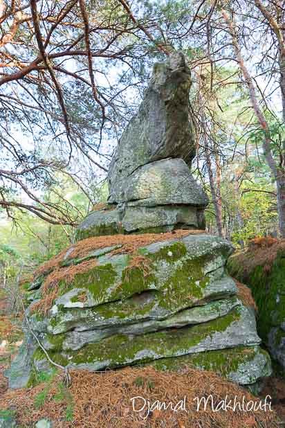 Pyramide de grès - La Roche qui parle (forêt de Fontainebleau) - Balade insolite