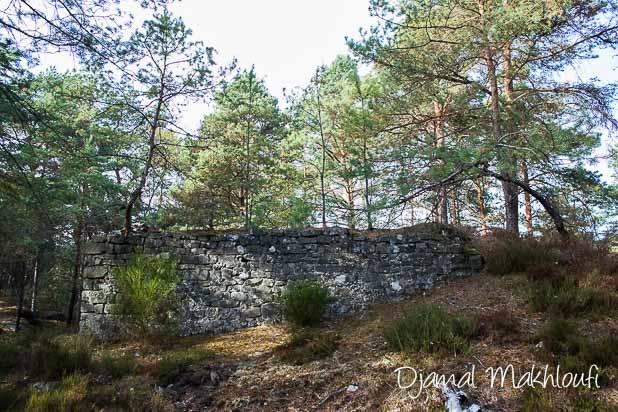 Reste d'un bâtiment de pierre en forêt de Fontainebleau