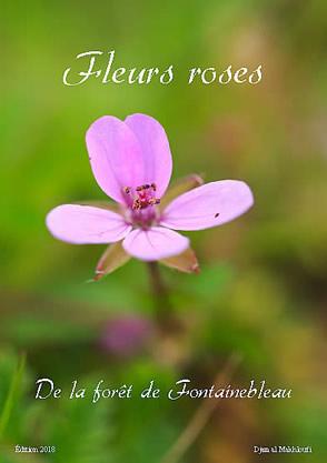eBook Fleurs roses sauvages - Djamal Makhloufi