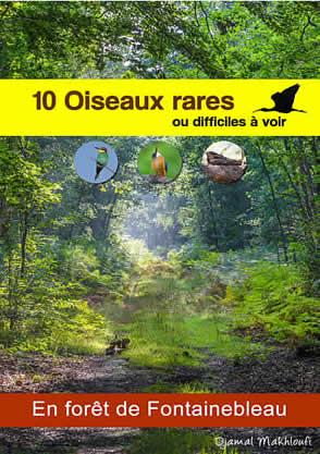 Oiseaux rares de la forêt de Fontainebleau - eBook PDF - Djamal Makhloufi
