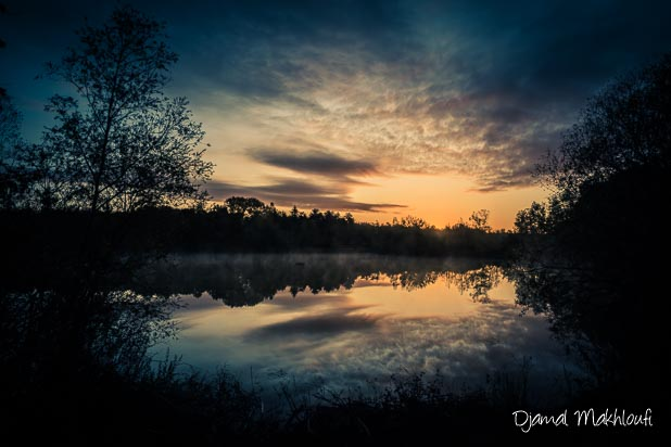 photo de paysage de la forêt de Fontainebleau