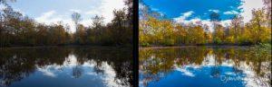 Comment préparer ses sorties photos nature avec Lightroom ?