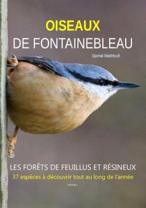 eBook Oiseaux des Bois - Forêt de Fontainebleau